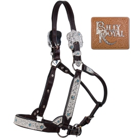 Billy Royal Show Halters